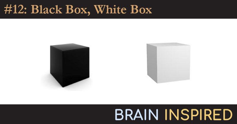 BI 012 Niko Kriegeskorte: Black Box, White Box