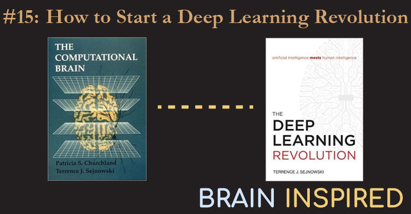BI 015 Terrence Sejnowski: How to Start a Deep Learning Revolution