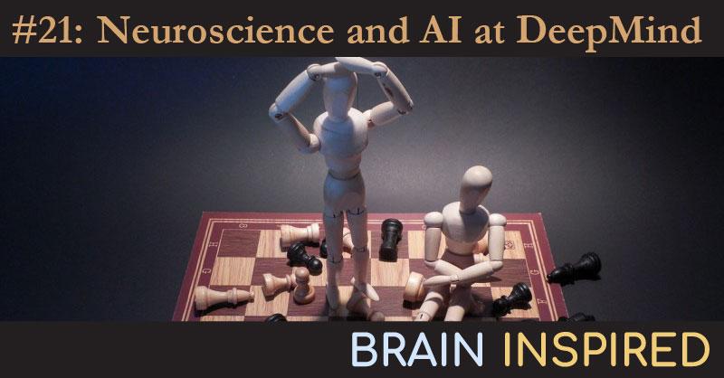 BI 021 Matt Botvinick: Neuroscience and AI at DeepMind