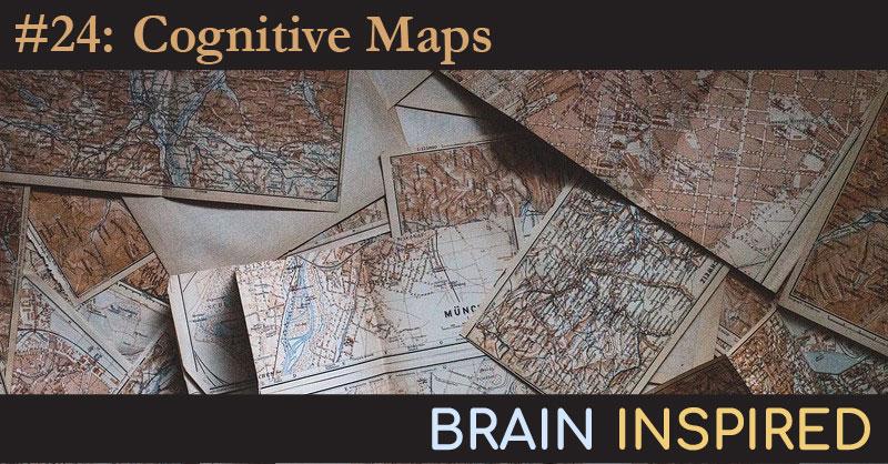 BI 024 Tim Behrens: Cognitive Maps