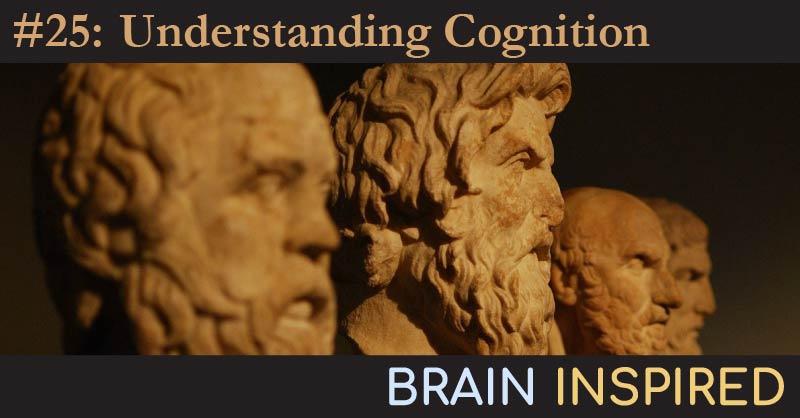 BI 025 John Krakauer: Understanding Cognition