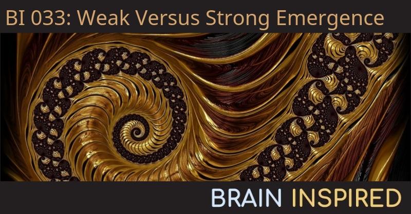 BI 033 Federico Turkheimer: Weak Versus Strong Emergence