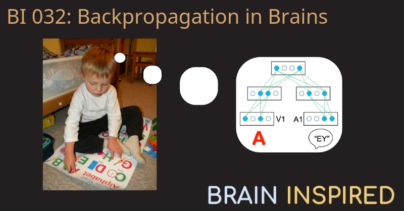 BI 032 Rafal Bogacz: Back-Propagation in Brains