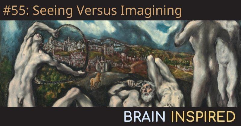 BI 055 Thomas Naselaris: Seeing Versus Imagining