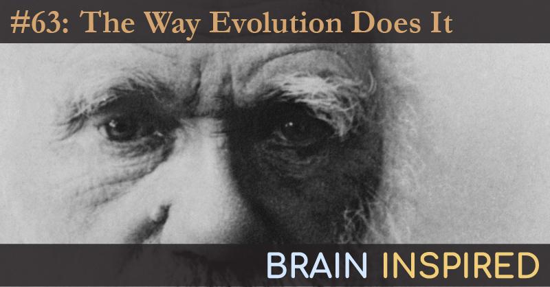 BI 063 Uri Hasson: The Way Evolution Does It