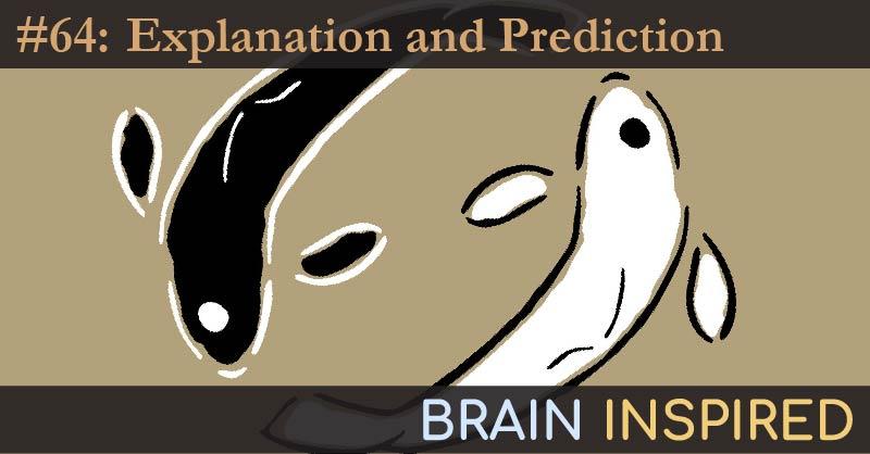 BI 064 Galit Shmueli: Explanation vs. Prediction