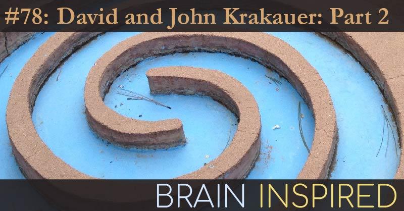 BI 078 David and John Krakauer: Part 2