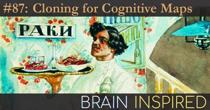 BI 087 Dileep George: Cloning for Cognitive Maps