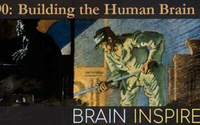 BI 090 Chris Eliasmith: Building the Human Brain