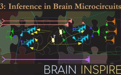 BI 093 Dileep George: Inference in Brain Microcircuits
