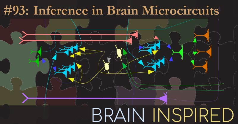 BI 093 Dileep George: Inference in Brain Microcircuits