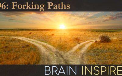 BI 096 Keisuke Fukuda and Josh Cosman: Forking Paths