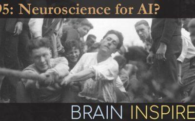BI 095 Chris Summerfield and Sam Gershman: Neuro for AI?