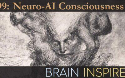 BI 099 Hakwan Lau and Steve Fleming: Neuro-AI Consciousness