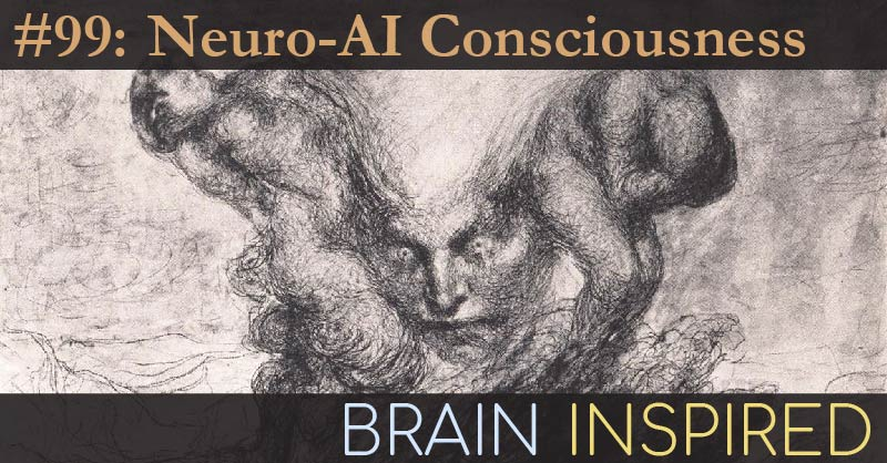 BI 099 Hakwan Lau and Steve Fleming: Neuro-AI Consciousness