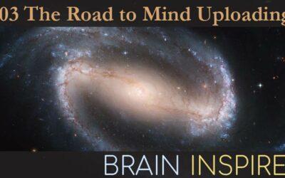 BI 103 Randal Koene and Ken Hayworth: The Road to Mind Uploading