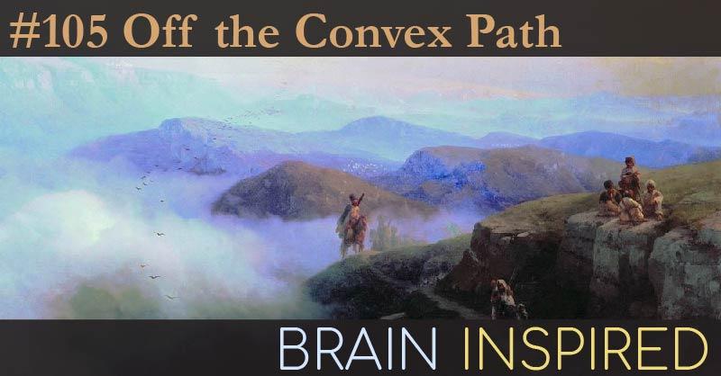 BI 105 Sanjeev Arora: Off the Convex Path