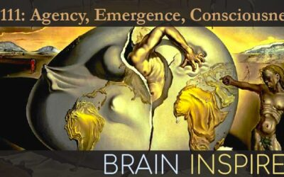 BI 111 Kevin Mitchell and Erik Hoel: Agency, Emergence, Consciousness