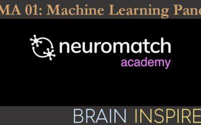 BI NMA 01: Machine Learning Panel