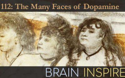 BI 112 Ali Mohebi and Ben Engelhard: The Many Faces of Dopamine