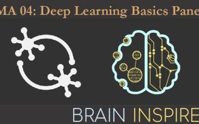 BI NMA 04: Deep Learning Basics Panel