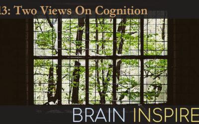 BI 113 David Barack and John Krakauer: Two Views On Cognition