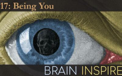 BI 117 Anil Seth: Being You